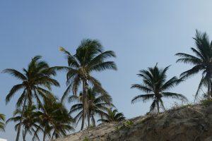www.schabel-kultur-blog.de zeigt Havannas Strände