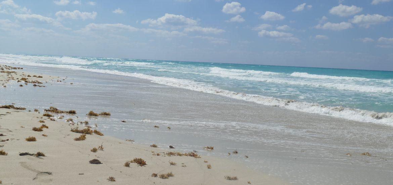 www.schabel-kultur-blog.de berichtet über Strände in Havanna , Kuba