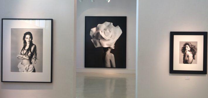 """Ausstellung """"Patrick Demarchelier"""" in der Galerie Camera Work präsentiert von www.schabel-kultur-blog.de"""