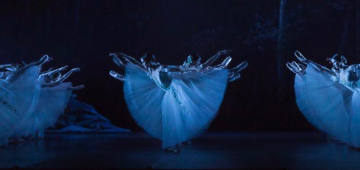 """""""Hui"""", schreit ein Besucher voller Überraschung und Bewunderung, als Giselle durch eine Luke in der Bühne nach ihrem faszinierenden Soli verschwindet. Seit über 270 Jahren wird """"Giselle"""" getanzt und begeistert immer noch das Publikum. Dieses Ballett ist das Meisterwerk der französischen Romantik, wird nie altmodisch, weil diese Zeit in ihrer Wald-, Liebes- und Feenromantik immer die Sehnsüchte der Menschen bedient."""