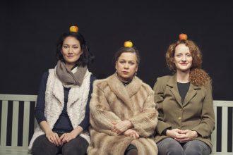 """Dörte Hansens """"Altes Land"""" präsentiert als Theaterkritik von www.schabel-kultur-blog.de"""