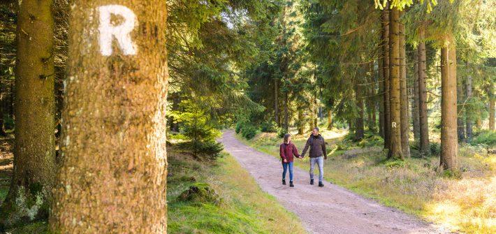 Wandern in Thüringen präsentiert von www.schabel-kultur-blog.de