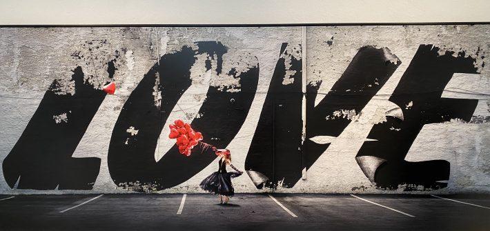 Ausstellung David Drebin in Camera Work Berlin präsentiert von www.schabel-kultur-blog.de