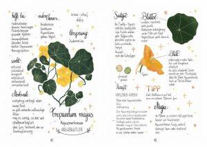 """Michaela v. Kessel """"Meine liebsten Gartenpflanzen"""" präsentiert von www.schabel-kultur-blog.de"""