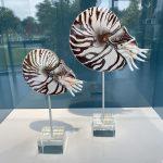 """Ausstellung """"InterRegionale Glaskunst"""" in Frauenau präsentiert von www.schabel-kultur-blog.de"""